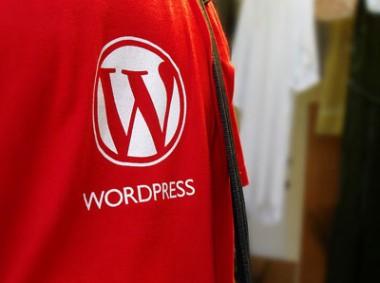 КДПВ Самая полная история WordPress. Часть 2 из 3.